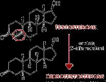 passaggio enzimatico da testosterone a DHT