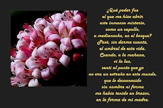 Imagenes con Frases para el Dia de la Madre, parte 2