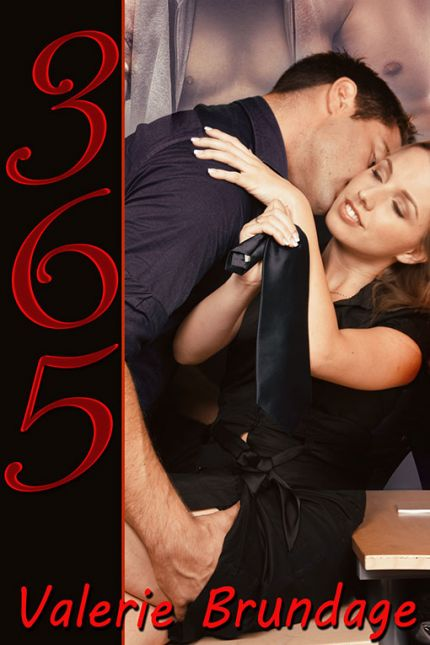 365 (an erotic romance novel)