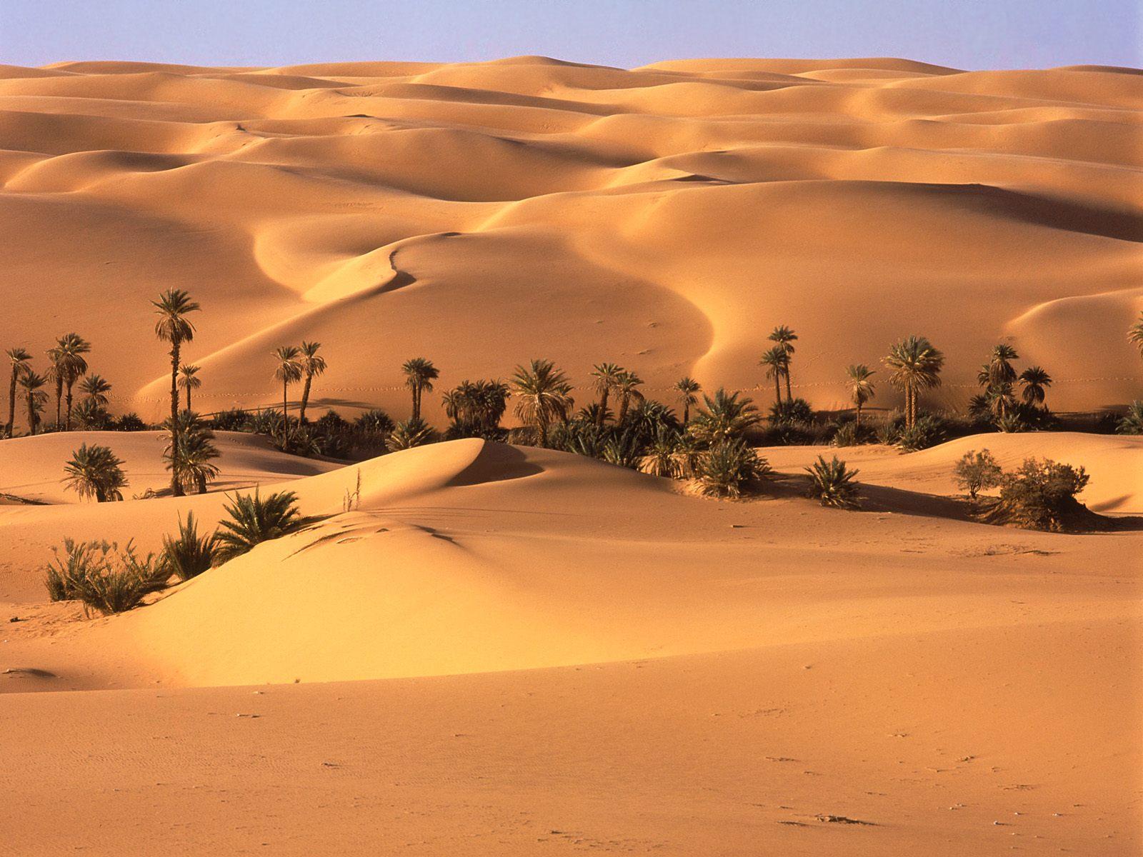 desert wallpapers top desktop no 1