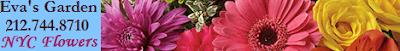 flowers NYC