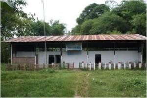 Foto Sekolah Kandang Sapi