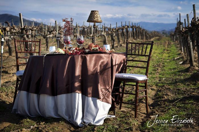 arreglo de mesa rustica en viñedo boda - mesa en marrón chocolate y plata