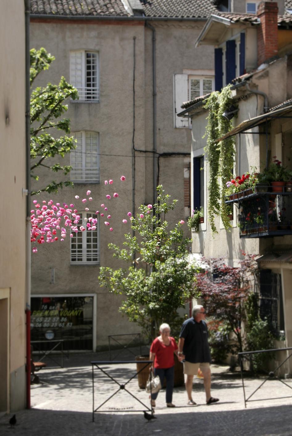 Marie h l ne richard rosae plasticae cahors juin jardin 2012 for Cahors jardin juin 2015