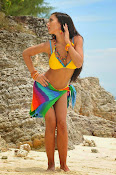 Amy Jackson Hot Photos from Yevadu-thumbnail-11