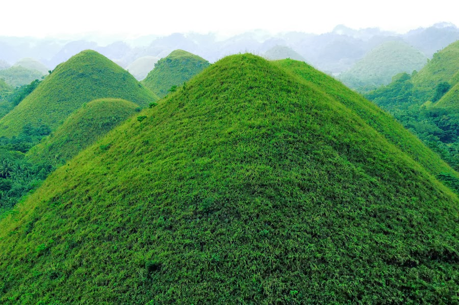 Top 50 amazing pictures of the philippines people places chocolate hills in bohol rainy season sciox Image collections
