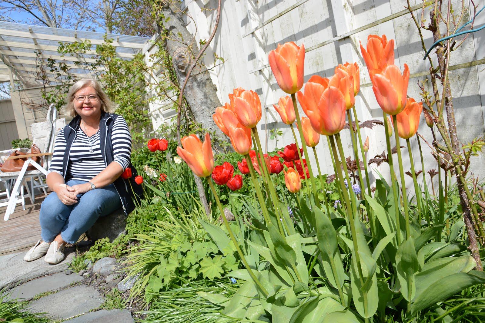 Lillians hage i Ørlandsbloggen