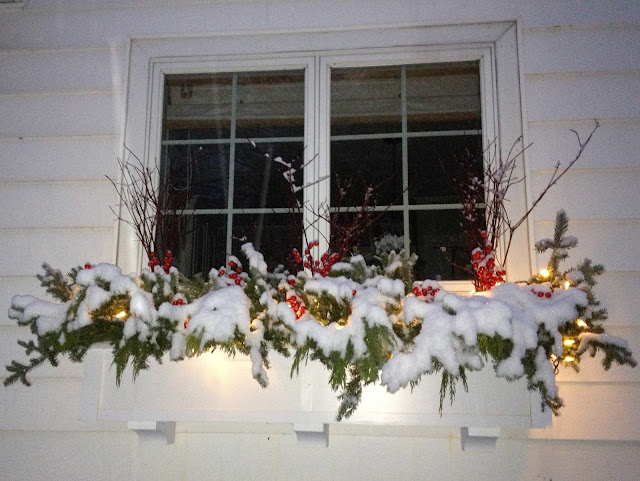 holiday window box -- The Impatient Gardener