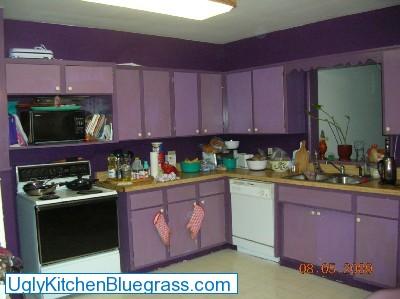 Necessary Pleasures Win A Kitchen Renovation