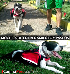 MOCHILAS CANINAS