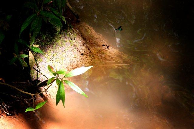 Panas Waterfalls, New Corella, Davao del Norte