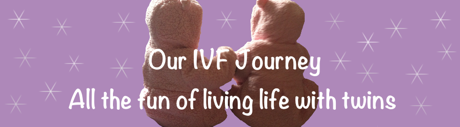 Our IVF Journey: All the fun of living life with twins