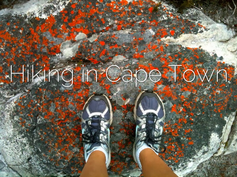 hiking in Cape Town by Marie Frei