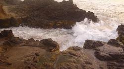 Mar fecundo