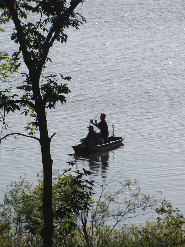 Banjo52 a e stallings fishing and deer creek state for Deer creek fishing