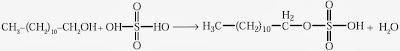 reaksi pembuatan natrium lauril sulfat