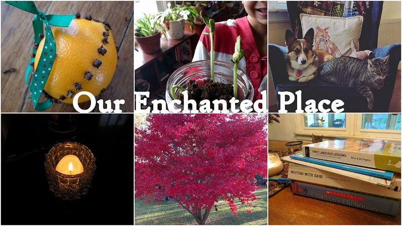 Our Enchanted Place