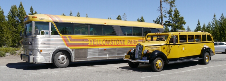 vintage Yellowstone buses