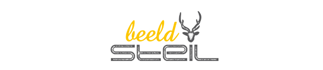 beeldsteil 