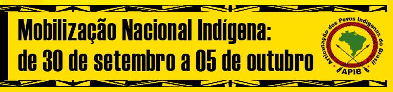 Em defesa dos territórios e dos povos indígenas!