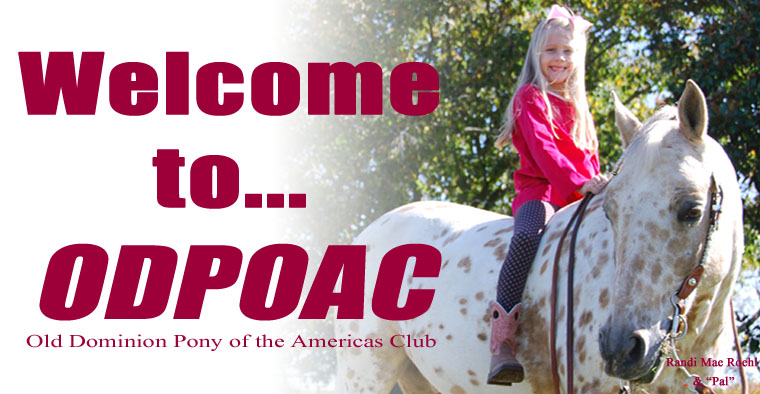 Old Dominion Pony of the Americas Club (ODPOAC)
