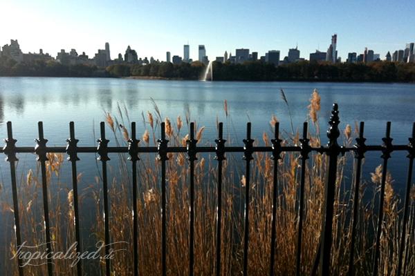 New York November 2012 Central Park See