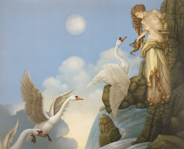 swans, Micheal Parkes, bird food