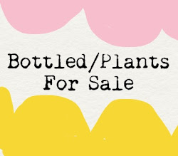 Bottled Plants and other plants!