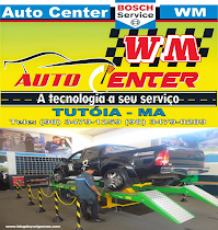 WM AUTO CENTER BOSH CAR SERVICE