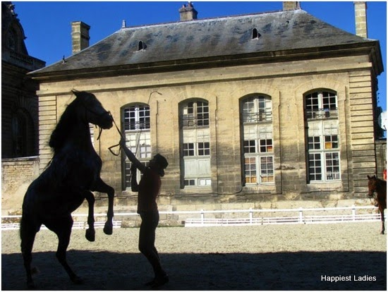 Horse Show- Grand Stable - Chantilly