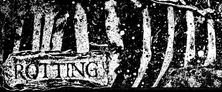 Rotting Graphics // The Art & Design of Hal Rotter