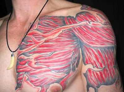 Musculos com tatuagens anatômica