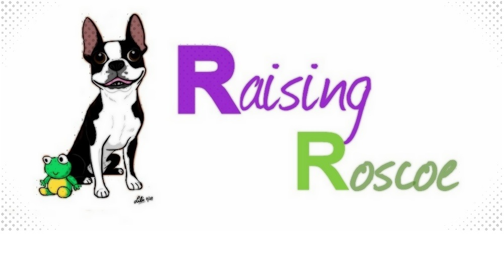 Raising Roscoe