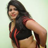 Sitara Hot Photos in Saree at Gundello Guchi Guchi Champake Movie Press Meet 20