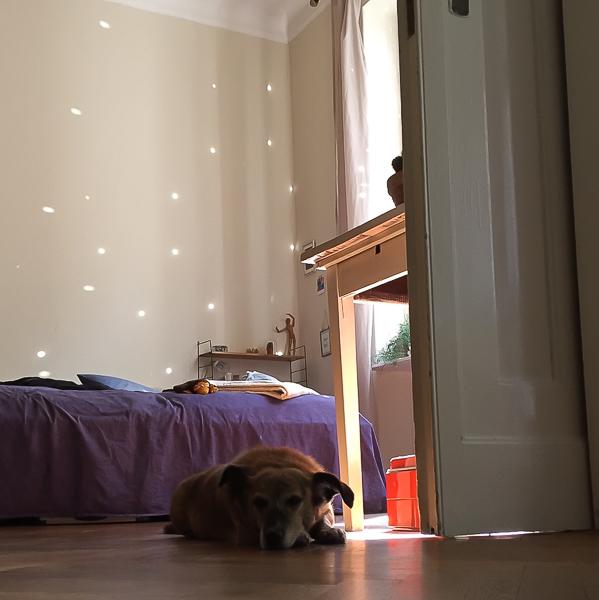 life montag. Black Bedroom Furniture Sets. Home Design Ideas
