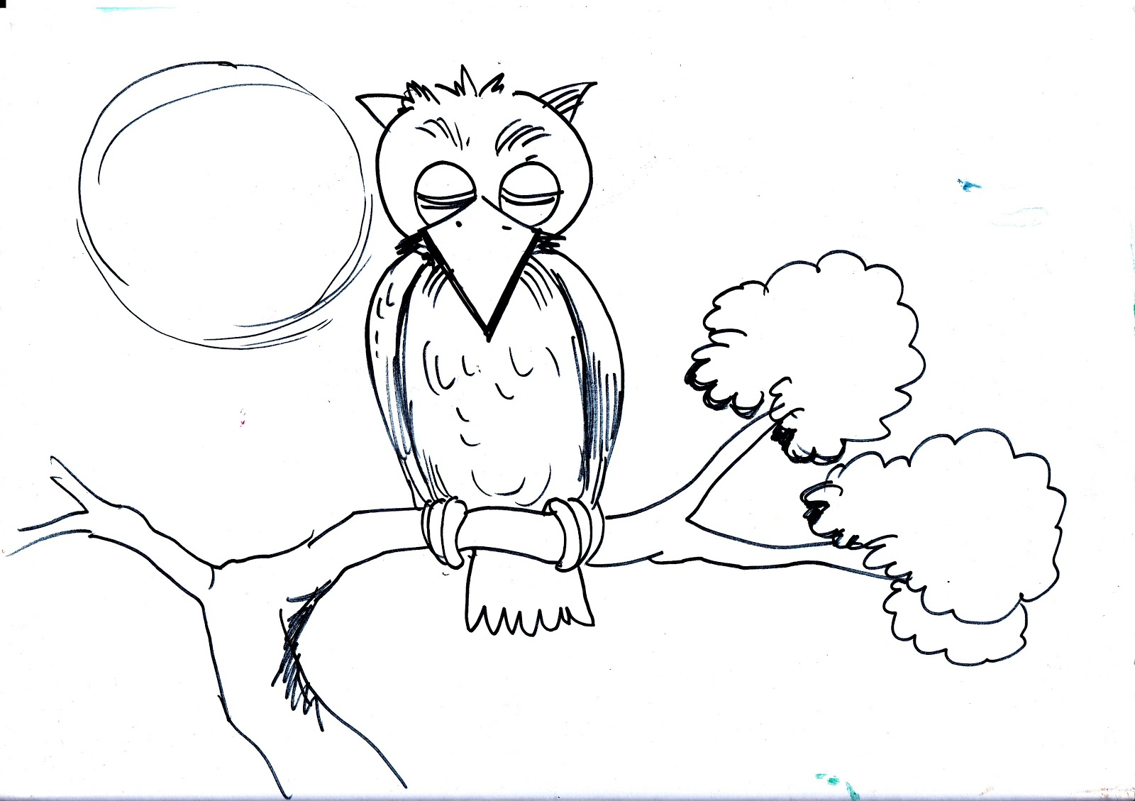 Mewarnai Gambar Burung Hantu Sketsa Gambar Kartun Burung Hantu Untuk ...