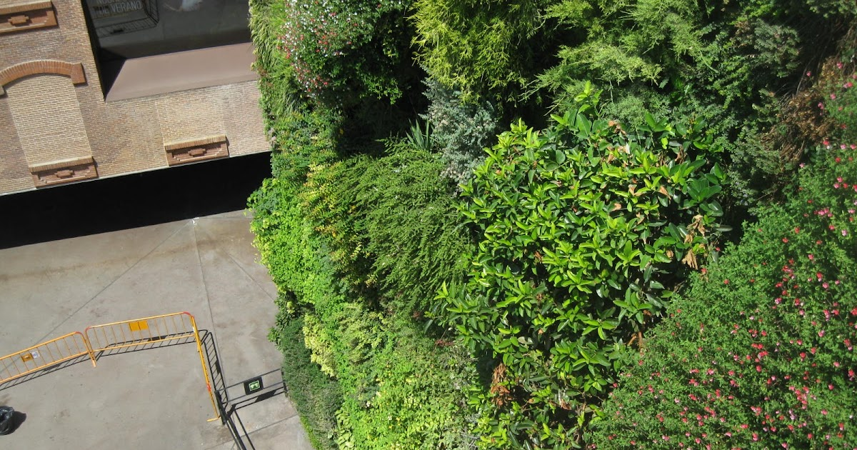 Isla verde jardines verticales jard n vertical caixaforum for Jardin vertical caixaforum