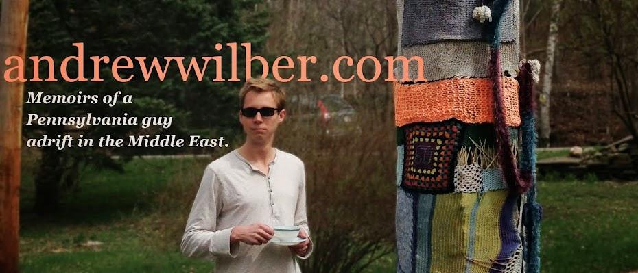 andrewwilber.com
