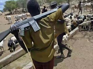 Fulani herdsmen strike in Benue, one killed; many declared missing