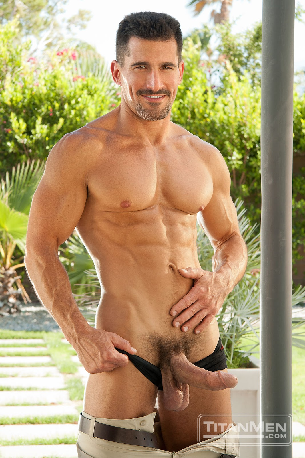 star gay porn David anthony
