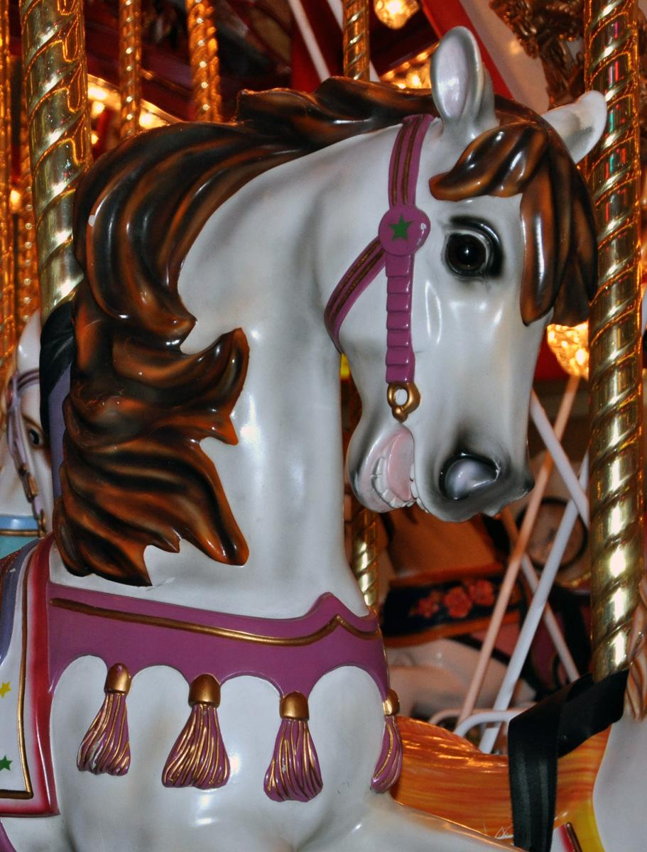 Braymere Custom Saddlery Carousel Tack
