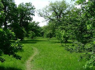Eichelgarten im Forstenrieder Park südlich von München