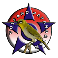 Jadwal Latihan Burung Pleci Garut