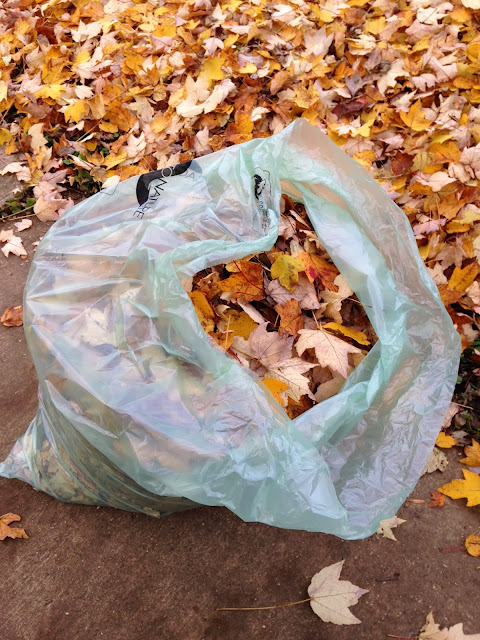 ADDled - Autumn Leaves Are Falling Down - Bag of leaves