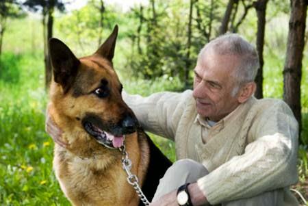 Associazione italiana difesa animali ed ambiente aiuta un - Portare il cane al canile ...