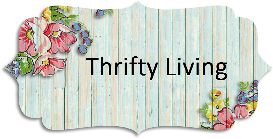 Ashley&#39;s Thrifty Living