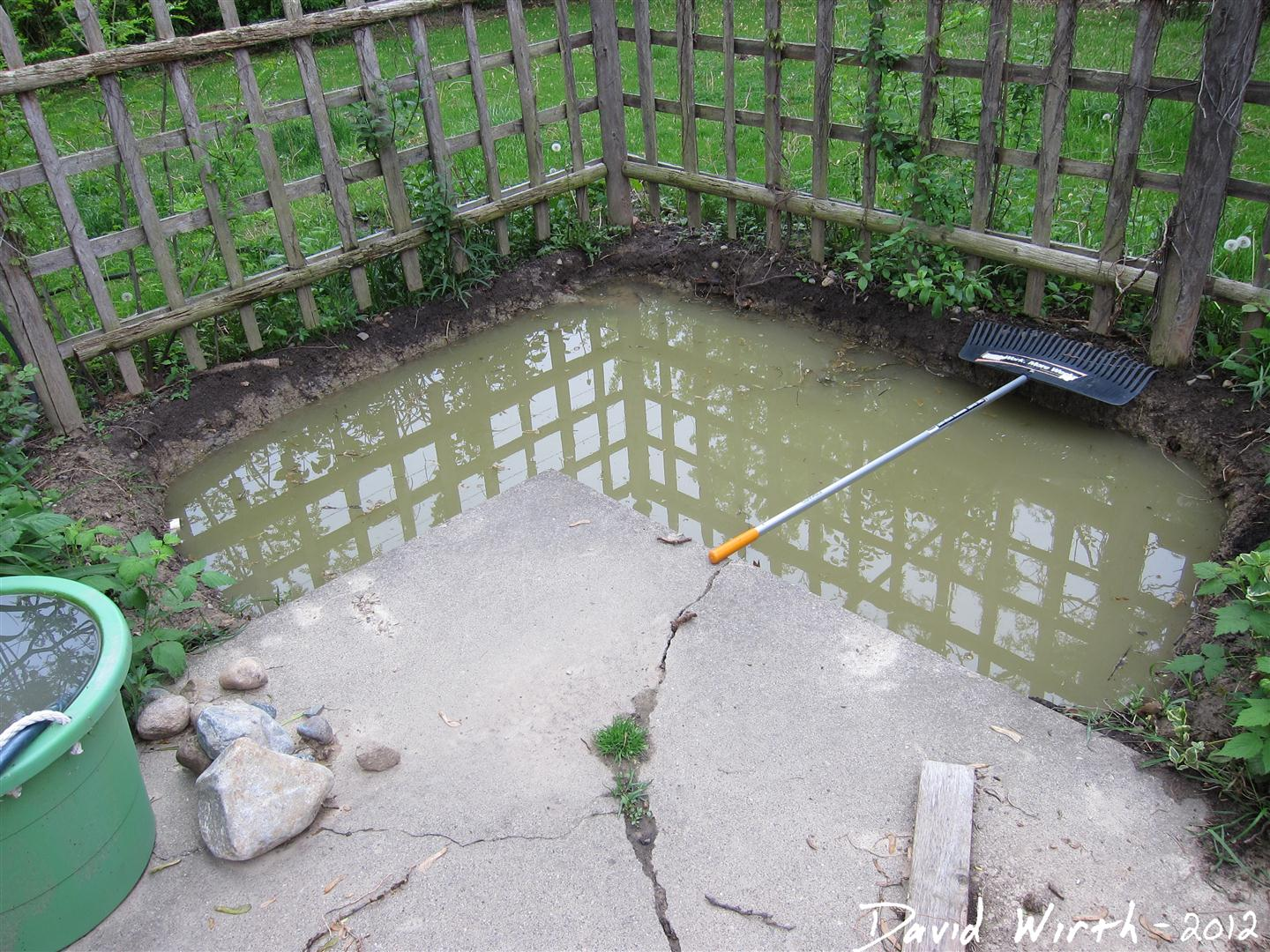 Cement Backyard Pond : Every time it rained i would have to get that water out before i could