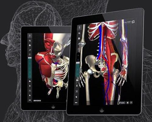 チームラボ、世界初!生きた人間の骨格の動きを忠実に再現したiPad向けデジタル教科書「teamLabBody」をリリース