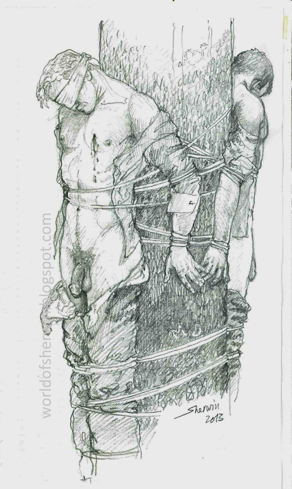 Sherwin's fantasy world