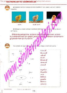 6.Sinif  Turkce Doku Yayinlari Ogrenci Calisma Kitabi Sayfa 146